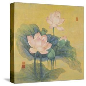 Dream Lotus by Ailian Price