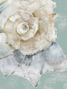 Pastel Shell I by Aimee Wilson