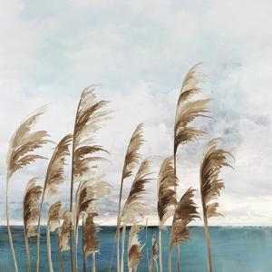 Summer Wind I by Aimee Wilson