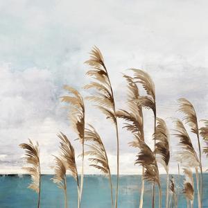 Summer Wind II by Aimee Wilson