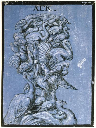 Air, C1600--Giclee Print