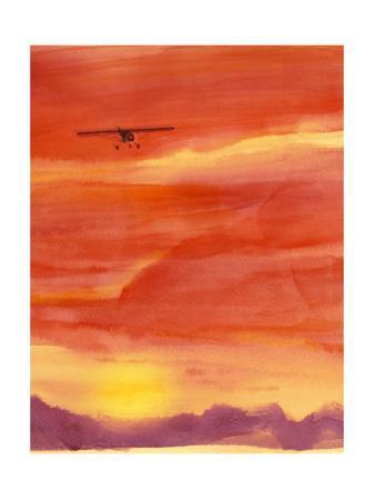 Airplane in Orange Sunset