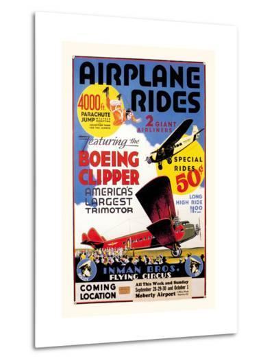 Airplane Rides: Inman Bros. Flying Circus--Metal Print