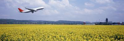 Airplane Taking Off, Zurich Airport, Kloten, Zurich, Switzerland--Photographic Print