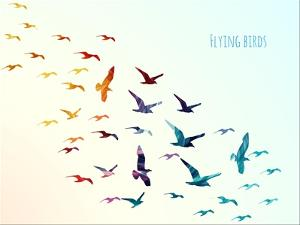 Colorful Silhouettes of Flying Birds, Vector Illustration by Ajgul