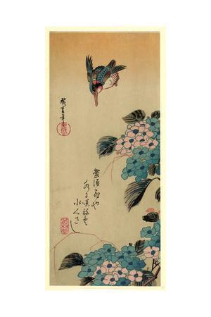 https://imgc.artprintimages.com/img/print/ajisai-ni-kawasemi_u-l-putrn30.jpg?p=0