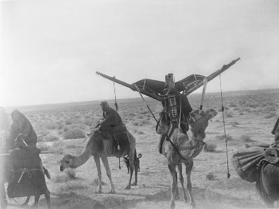 Ajman Bedouin on the Move (With Women's Litter, Hawdaj) Near Thaj, Saudi Arabia, 13th March 1911-William Henry Irvine Shakespear-Photographic Print