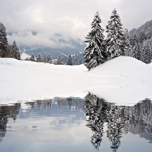 Winter Scene by ajn