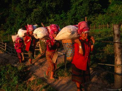 https://imgc.artprintimages.com/img/print/akha-women-carrying-shopping-home-muang-sing-laos_u-l-p5d9kl0.jpg?p=0
