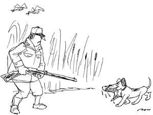 Duck hunter's retriever bring back a fish in its mouth, rather than a duck… - New Yorker Cartoon by Al Ross