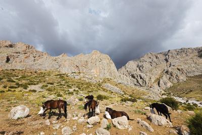https://imgc.artprintimages.com/img/print/ala-daglar-national-park-cappadocia-anatolia-turkey-asia-minor-eurasia_u-l-q12sral0.jpg?p=0