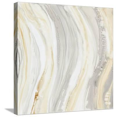 Alabaster I-Debbie Banks-Stretched Canvas Print