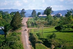 Mennonites in Belize by Alain Le Garsmeur