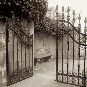 Avignon I by Alan Blaustein