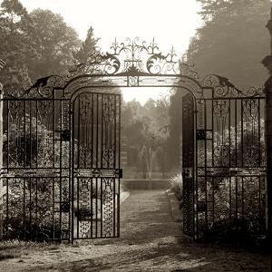 Hampton Gates III by Alan Blaustein