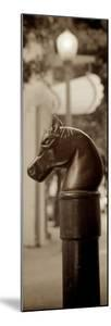 Hitching Post Pano #1 by Alan Blaustein