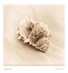 Il Oceano III by Alan Blaustein