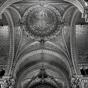 Lyon I by Alan Blaustein