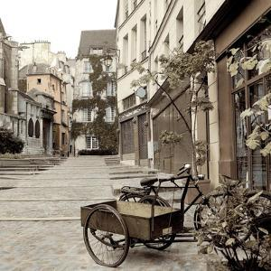 Marais Bicycle by Alan Blaustein