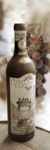 Montepulciano Vineyard #1 by Alan Blaustein