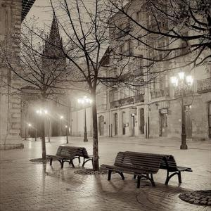 Sepia Tone Photography Artwork For Sale Posters And