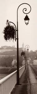 Pont de Chinon by Alan Blaustein
