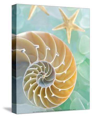 Seaglass 2 by Alan Blaustein