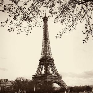 Tour Eiffel by Alan Blaustein