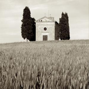 Tuscany IX by Alan Blaustein