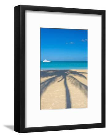 Antigua, Jolly Bay Beach, Palm Trees Casting Shadows