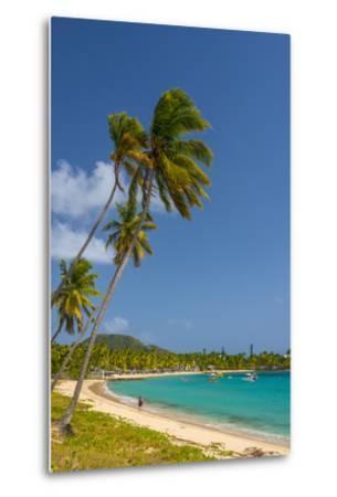 Caribbean, Antigua, Morris Bay, Morris Bay Beach