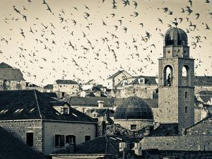 Croatia, Dalmatia, Dubrovnik, Old Town (Stari Grad), Clock Tower Surrounded by Birds by Alan Copson
