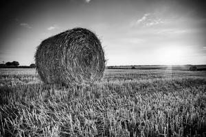 France, Centre Region, Indre-Et-Loire, Sainte Maure De Touraine, Straw Bale in Field by Alan Copson