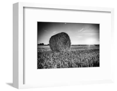 France, Centre Region, Indre-Et-Loire, Sainte Maure De Touraine, Straw Bale in Field