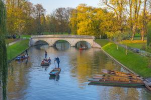 Punting on the Backs, River Cam, Cambridge, Cambridgeshire, England, United Kingdom, Europe by Alan Copson