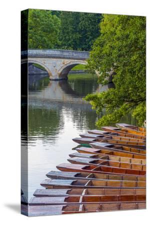 Punts on the River Cam, the Backs, Cambridge, Cambridgeshire, England, United Kingdom, Europe