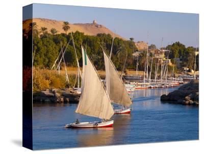 River Nile, Aswan, Upper Egypt, Egypt, North Africa, Africa