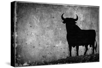 Spain, Andalucia, Jerez De la Frontera, El Cuadrejon, An Osborne Bull or Toro De Osborne