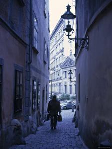 Vienna, Austria by Alan Copson