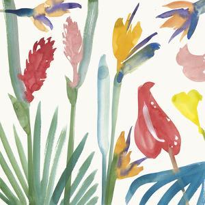 Tropical Exotics I by Alan Halliday