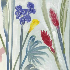 Tropical Exotics II by Alan Halliday
