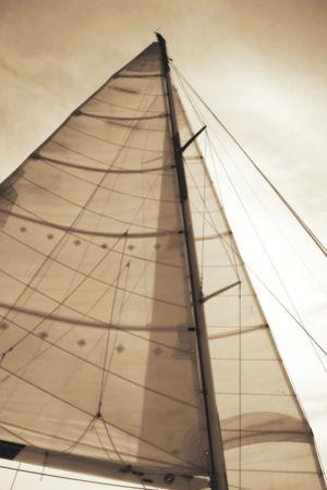 Beaufort Sails I by Alan Hausenflock