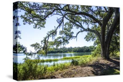 Bradley Creek II