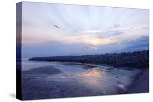 Cedar Island Sunrise by Alan Hausenflock
