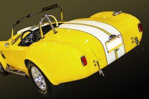 Classic Cobra II by Alan Hausenflock