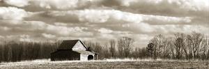 Cloudy Skies Panel II by Alan Hausenflock