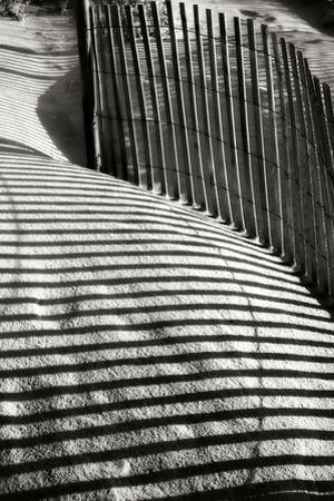 Dunes Fence VI by Alan Hausenflock
