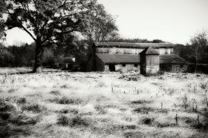 Fallow Fields I by Alan Hausenflock
