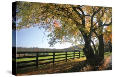 Hillside Farm I