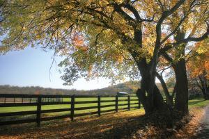 Hillside Farm I by Alan Hausenflock